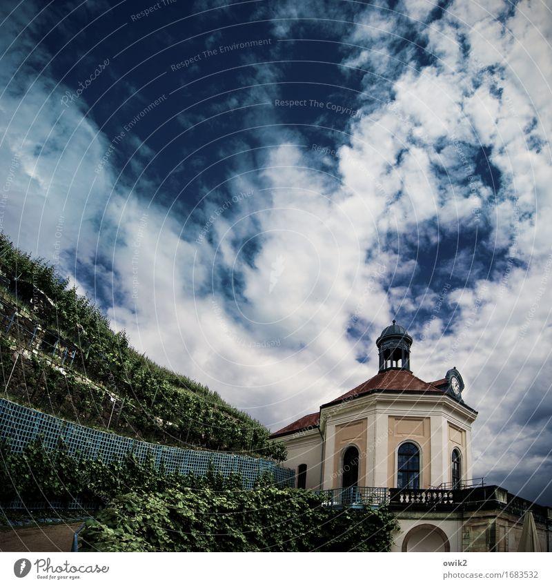 Pavillon Umwelt Natur Landschaft Pflanze Himmel Wolken Schönes Wetter Nutzpflanze Weinberg Weinbau Weingut Gebäude ästhetisch historisch fleißig elegant Idylle