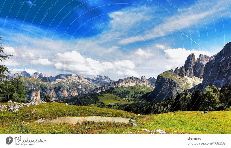 gröden Farbfoto Außenaufnahme Tag Blick nach vorn Umwelt Natur Landschaft Sommer Schönes Wetter Felsen Alpen Berge u. Gebirge Gipfel Ferien & Urlaub & Reisen