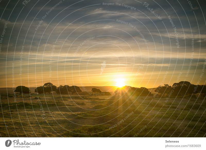 sunlight Ferien & Urlaub & Reisen Tourismus Ausflug Abenteuer Ferne Freiheit Safari Sommer Sommerurlaub Sonne Umwelt Natur Landschaft Himmel Wolken Horizont