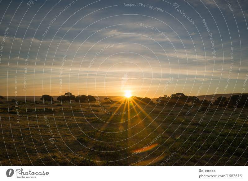 sunshine harmonisch Erholung ruhig Ferien & Urlaub & Reisen Tourismus Ausflug Abenteuer Ferne Freiheit Sommer Sonne Umwelt Natur Landschaft Himmel Wolken