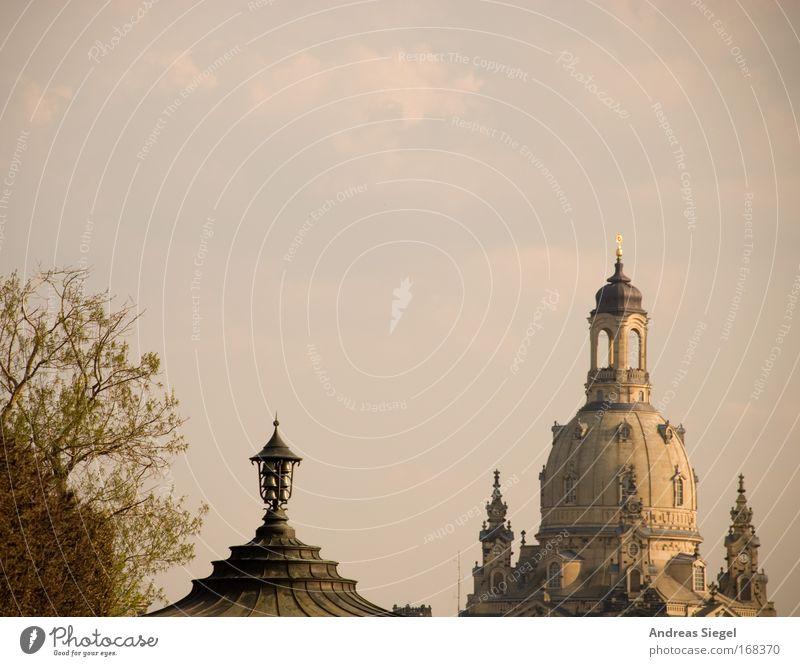 [Harusaki|DD] Dresdner Mützen Himmel Baum Ferien & Urlaub & Reisen Architektur Park Deutschland Ausflug Tourismus Kirche Dach Turm Bauwerk Schönes Wetter historisch Dresden Skyline