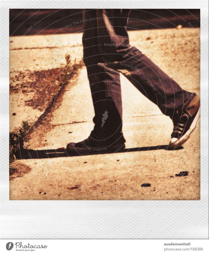 Sideways Mensch Mann Jugendliche weiß Sonne ruhig Erwachsene schwarz Gras Bewegung Beine Fuß braun gold laufen maskulin