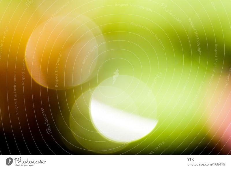 Coloured Lights Sonne grün rot Freude Farbe Luft Stimmung glänzend Design ästhetisch rund fantastisch Warmherzigkeit leuchten Unschärfe