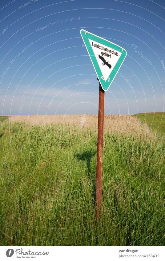 Schild im Grünen Farbfoto Außenaufnahme Menschenleer Tag Kontrast Sonnenlicht Weitwinkel Zufriedenheit Erholung ruhig Ferien & Urlaub & Reisen Tourismus Ausflug