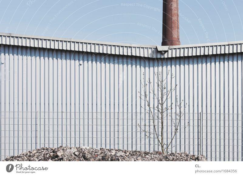 industrie Baustelle Fabrik Wirtschaft Industrie Mittelstand Himmel Wolkenloser Himmel Baum Industrieanlage Gebäude Mauer Wand Schornstein Zaun Bauschutt trist