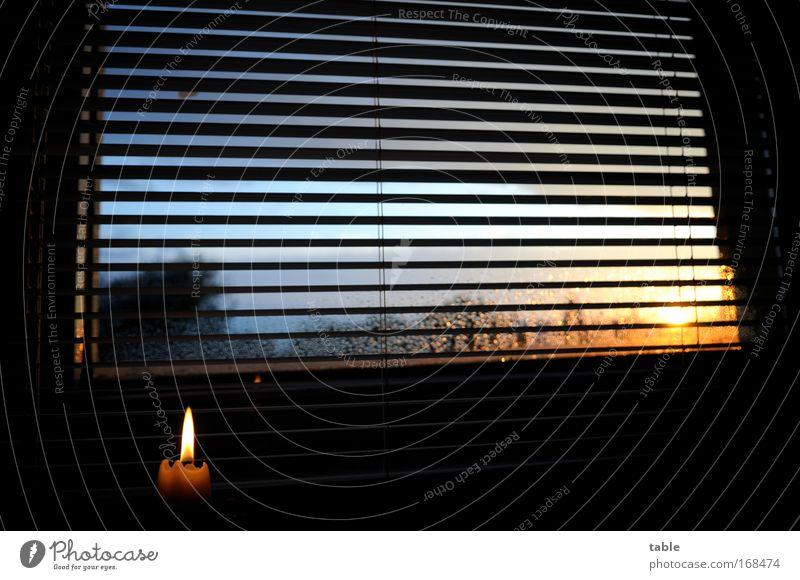 Gegenlicht Farbfoto Abend Dämmerung Sonnenlicht Sonnenaufgang Sonnenuntergang Häusliches Leben Wohnung Wohnzimmer Fenster Luft Wassertropfen Himmel
