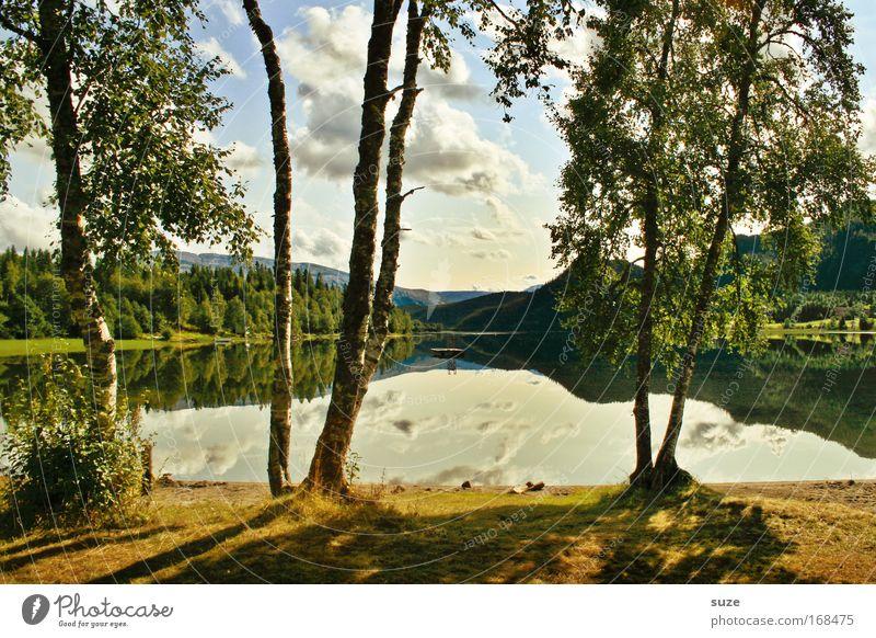 Zwischendurch Natur Baum Pflanze Ferien & Urlaub & Reisen Erholung Wiese Gras Berge u. Gebirge Freiheit Landschaft warten Umwelt Ausflug Tourismus Klima Freizeit & Hobby