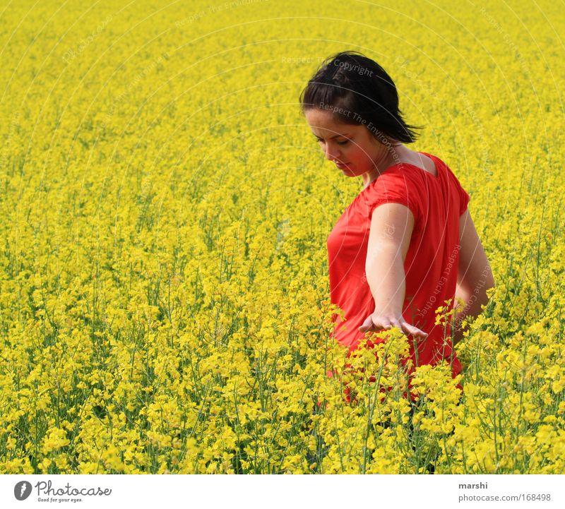 gefühltes Gelb Mensch Frau Natur Ferien & Urlaub & Reisen Pflanze schön Sommer rot Hand Blume Landschaft gelb Erwachsene Wiese Gefühle feminin