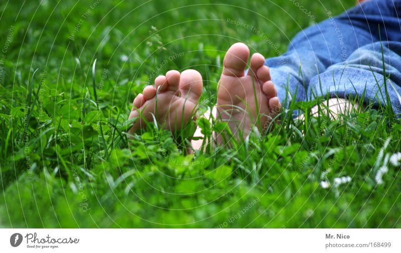 bläck fööss Natur Sommer ruhig Erholung Wiese Gras Frühling Garten Beine Fuß Kindheit Zufriedenheit Haut liegen frisch Pause