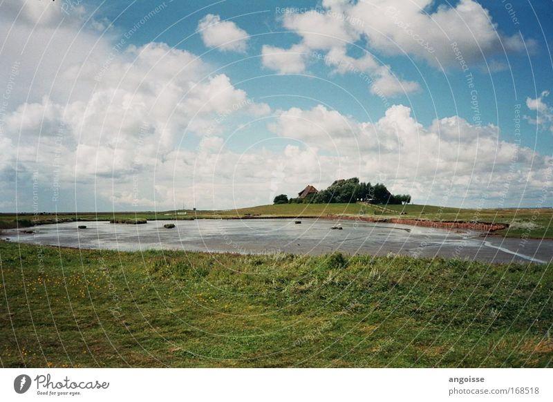 Das Gasthaus am Ende des Universums Wasser Himmel weiß grün blau Sommer Ferien & Urlaub & Reisen ruhig Gras Freiheit grau Landschaft Feld Küste nass