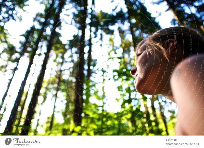Waldgesicht Mensch feminin Junge Frau Jugendliche Kopf 1 18-30 Jahre Erwachsene Umwelt Natur Tier Sonne Sonnenlicht Frühling Sommer Baum Blatt Urwald genießen