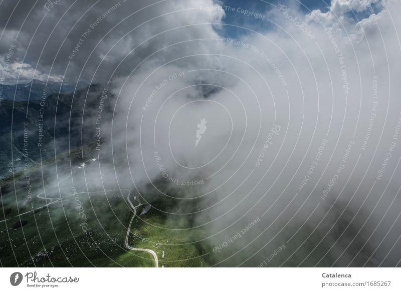 In den Wolken Himmel Natur blau Pflanze Sommer grün weiß Landschaft Wolken Freude Ferne Wald Wege & Pfade fliegen Zufriedenheit Feld
