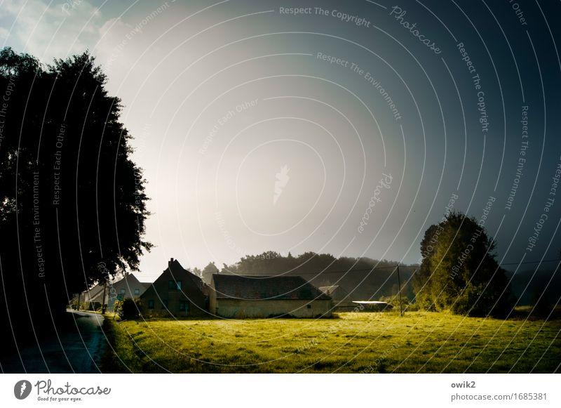 Sorbisches Dorf Natur Pflanze Baum Landschaft Wolken ruhig Haus Ferne Umwelt Straße Gras Gebäude Deutschland Horizont leuchten Idylle