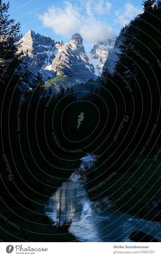 Drei Zinnen Blick 1 Umwelt Natur Landschaft Pflanze Himmel Sommer Baum Tanne Wald Felsen Alpen Berge u. Gebirge Dolomiten Gipfel Schlucht Flussufer Bach