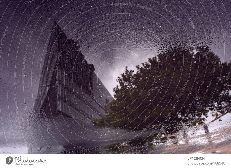 Terry Terrany Farbfoto Gedeckte Farben Außenaufnahme Nahaufnahme abstrakt Textfreiraum oben Tag Reflexion & Spiegelung Unschärfe Schwache Tiefenschärfe Umwelt