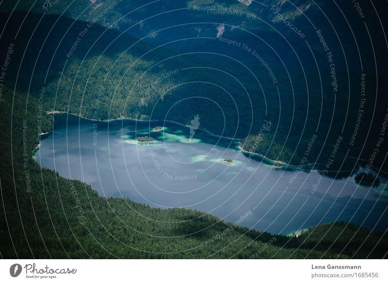 Eibsee Natur Ferien & Urlaub & Reisen Pflanze Sommer schön Wasser Landschaft Erholung ruhig Wald Berge u. Gebirge Umwelt Schwimmen & Baden See Tourismus
