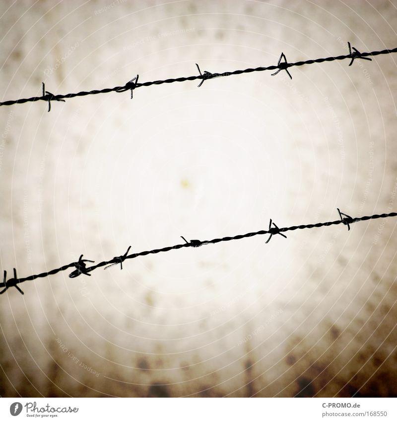 Stacheldraht Wand Mauer Stein Angst Sicherheit bedrohlich Stahl Zaun Krieg Barriere Terror