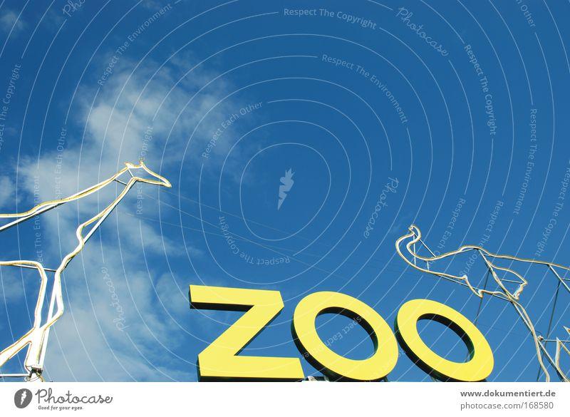 giraffe vs. elefant Farbfoto Außenaufnahme Menschenleer Tag Sonnenlicht Tier Zoo Giraffe Elefant 2 Schriftzeichen Schilder & Markierungen Hinweisschild