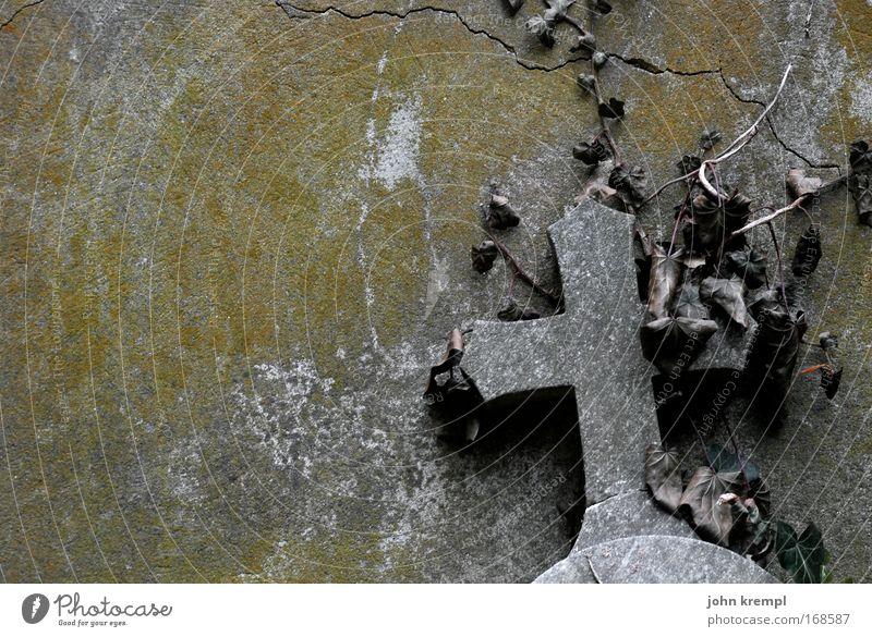 R.I.P. Farbfoto Gedeckte Farben Außenaufnahme Menschenleer Textfreiraum links Friedhof alt trist Wärme Güte trösten ruhig Traurigkeit Trauer Tod Kreuz Efeu