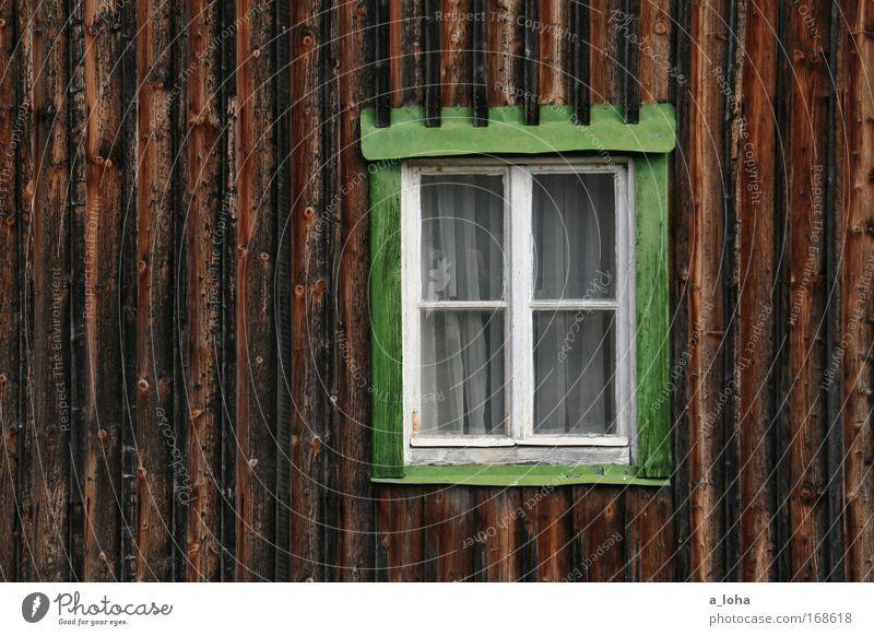 irgendwo im nirgendwo Sommer Handwerker Menschenleer Haus Mauer Wand Fenster Holz Glas Linie Streifen Häusliches Leben alt Originalität braun grün ruhig
