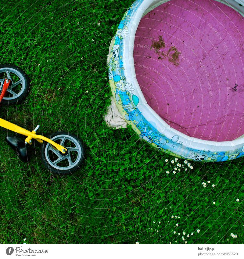 triathlon Natur Wasser Pflanze Blume Freude Umwelt Wiese Spielen Gras Glück Garten Erde Fahrrad Freizeit & Hobby Schwimmbad Grünpflanze