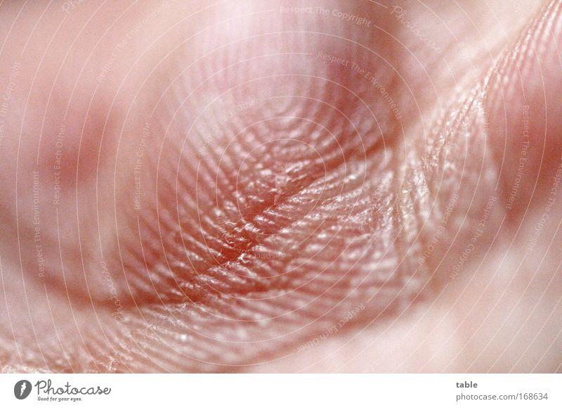 Spuren alt Hand Erwachsene Gefühle Bewegung Körper Haut maskulin Gesundheitswesen Warmherzigkeit Kommunizieren einzigartig Sauberkeit berühren Schutz Krankheit