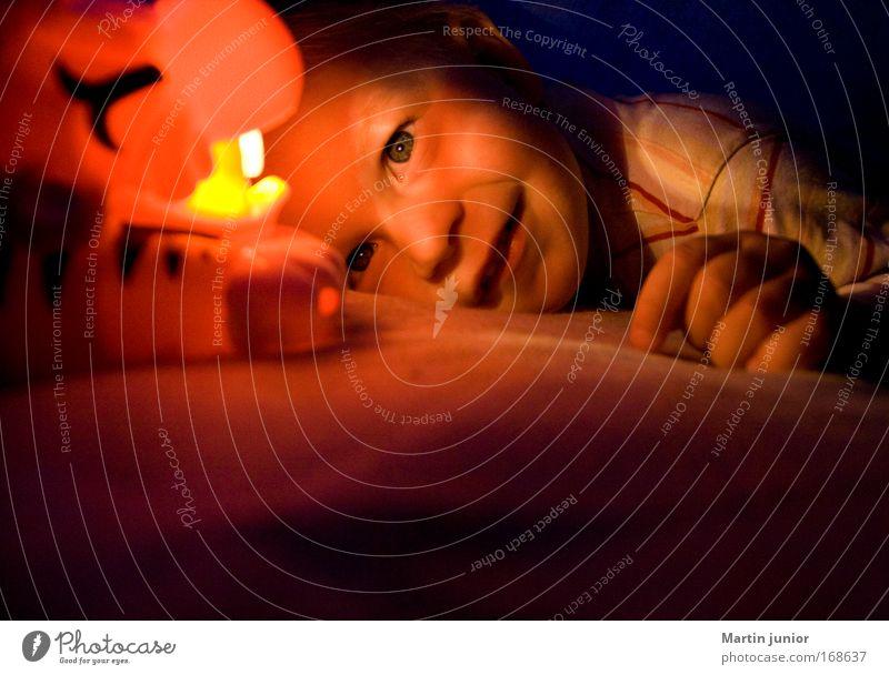 In der Höhle des Tigers Farbfoto mehrfarbig Innenaufnahme Textfreiraum unten Abend Licht Zentralperspektive Porträt Vorderansicht Blick nach vorn Mensch