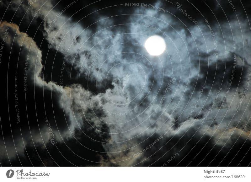 Horrorgeschichten Natur Himmel Sonne Ferien & Urlaub & Reisen Wolken Wärme Regen Angst Wind Wetter fliegen schlafen Macht bedrohlich Klima Nachthimmel