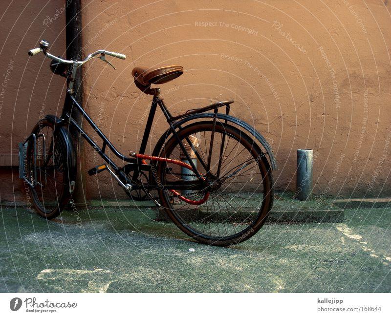 holländer Haus Wand Mauer Stil braun Fahrrad Freizeit & Hobby elegant Design Verkehr authentisch Lifestyle Coolness fahren Güterverkehr & Logistik Parkplatz