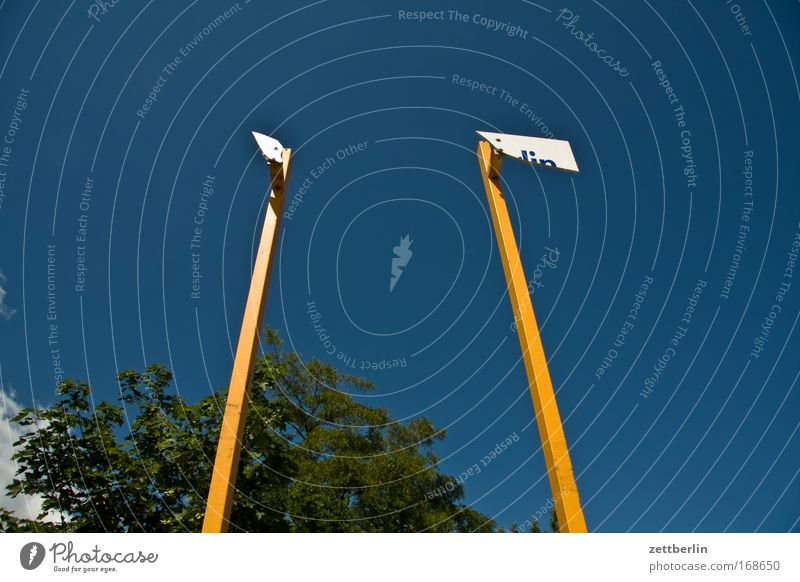 Textfreiraum Himmel Baum Schilder & Markierungen Information Tafel Schönes Wetter Baumkrone Blauer Himmel Speisetafel Mast Fahnenmast himmelblau Transparente Wolkenloser Himmel Aushang