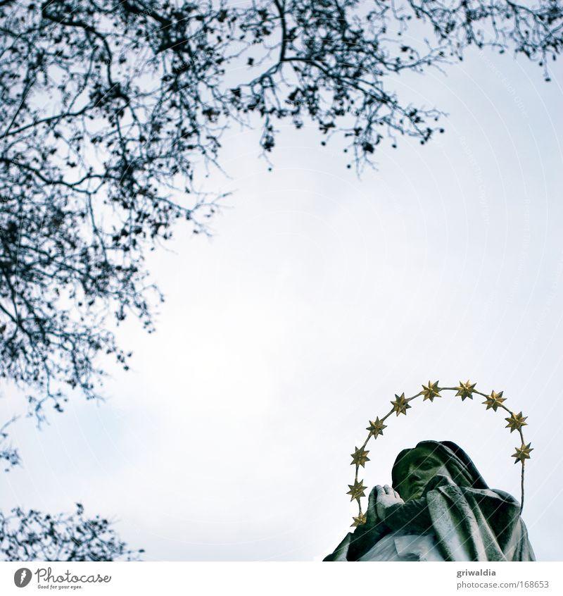 holy mary? Frau Himmel Hand ruhig Gesicht Erwachsene Kopf Religion & Glaube ästhetisch Hoffnung Ast historisch Denkmal Statue Gebet