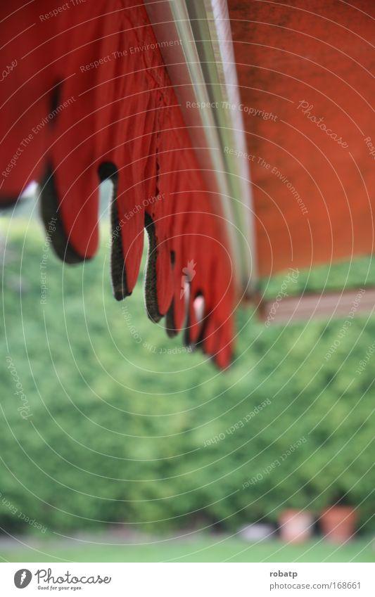 Alte Markise alt grün Pflanze rot Sommer Erholung Garten Schutz Häusliches Leben Terrasse Topfpflanze