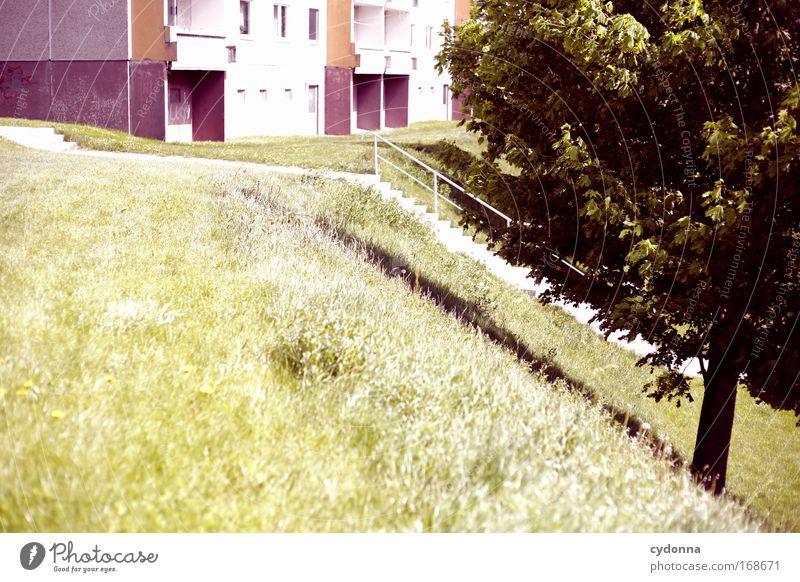 Abstieg oder Aufstieg? Natur Baum Sommer Einsamkeit Leben Wiese Gefühle Freiheit träumen Traurigkeit Architektur Wohnung Umwelt Perspektive Treppe Zukunft
