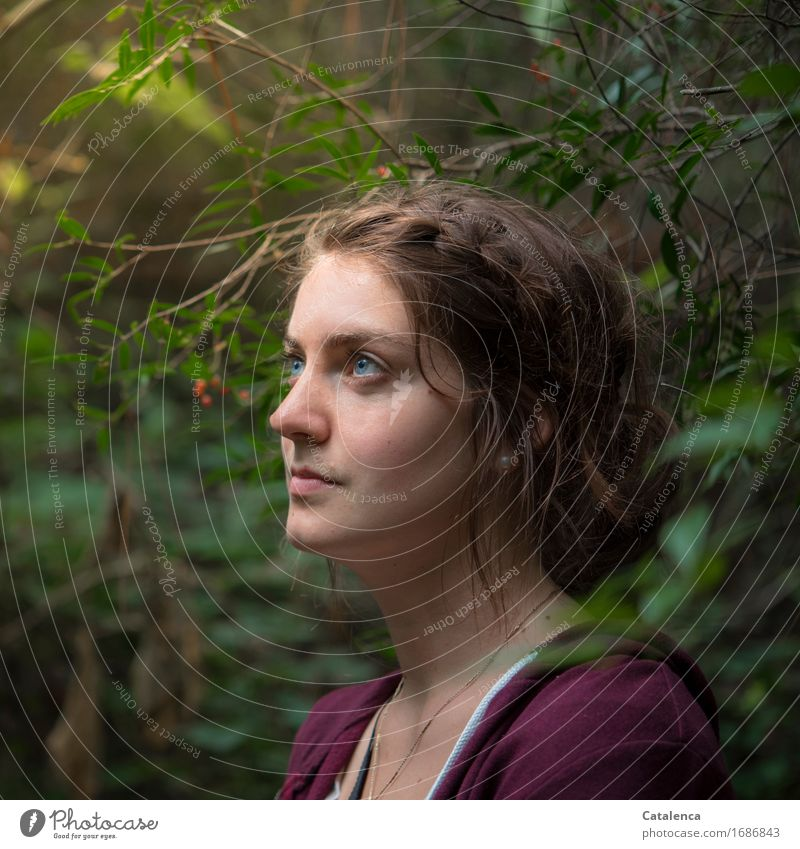 Durchblick Ausflug Ferne Sommer wandern feminin Junge Frau Jugendliche 1 Mensch 18-30 Jahre Erwachsene Natur Pflanze Sträucher Blatt Blüte rote Beeren Urwald