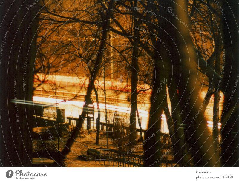 rush hour Baum rot Straße Lampe PKW Lichtschweif