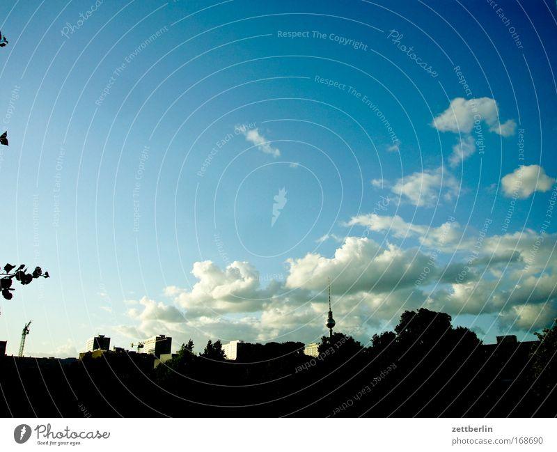 Berlin Skyline Haus Gebäude Stadt Berliner Fernsehturm Himmel Wolken Kumulus blau Blauer Himmel himmelblau Sommer Abend Dämmerung