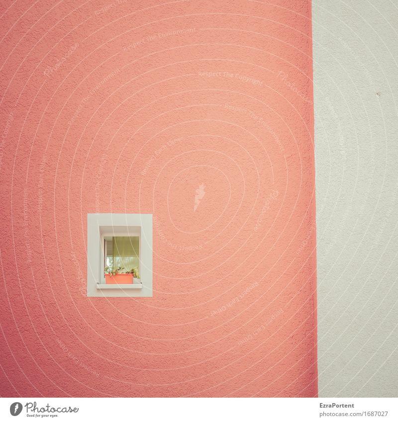 Fensterchen mit Blattkaktus Pflanze Haus Bauwerk Gebäude Architektur Mauer Wand Fassade Linie klein rot weiß ästhetisch Design Farbe Einsamkeit einzeln