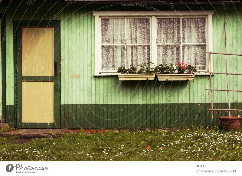 Laube Natur alt grün Sommer Umwelt Fenster Wiese Wand Mauer Garten Tür Fassade Freizeit & Hobby authentisch Vergänglichkeit einfach