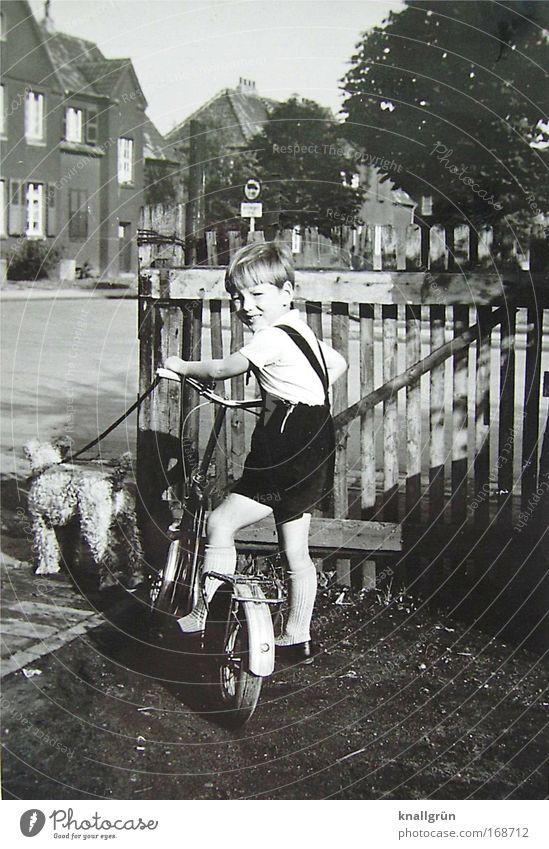 Kindheit Schwarzweißfoto Außenaufnahme Tag Blick in die Kamera Spielen Roller fahren Tretroller Mensch maskulin Junge 1 3-8 Jahre Tier Haustier Hund Fox-Terrier