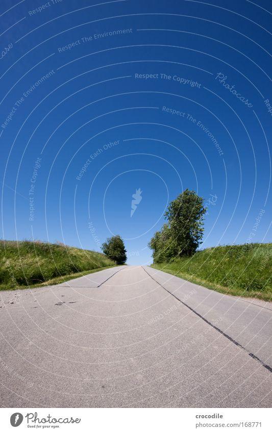 Feldweg Natur Himmel Sonne Pflanze Sommer Blatt Wolken Straße Frühling Landschaft Luft Straßenverkehr Wetter Umwelt Erde