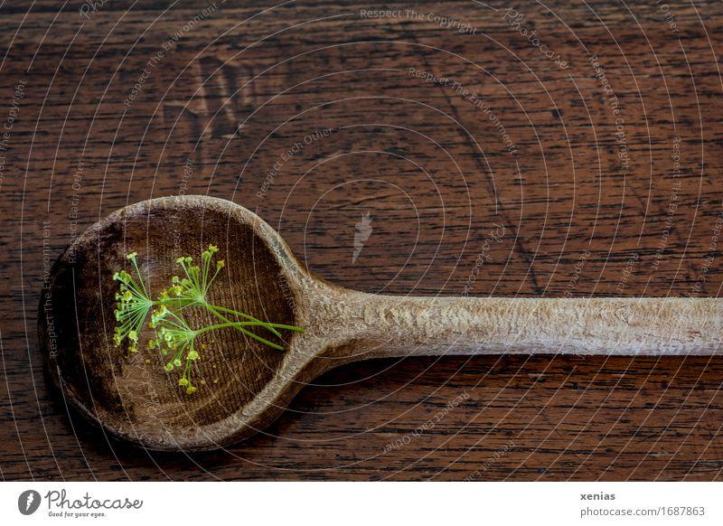 Kochlöffel mit Dillblüten liegt auf Holzuntergrund Kräuter & Gewürze Essen Löffel Küche braun gelb grün Maserung Hintergrundbild Holzmaserung würzen Bioprodukte