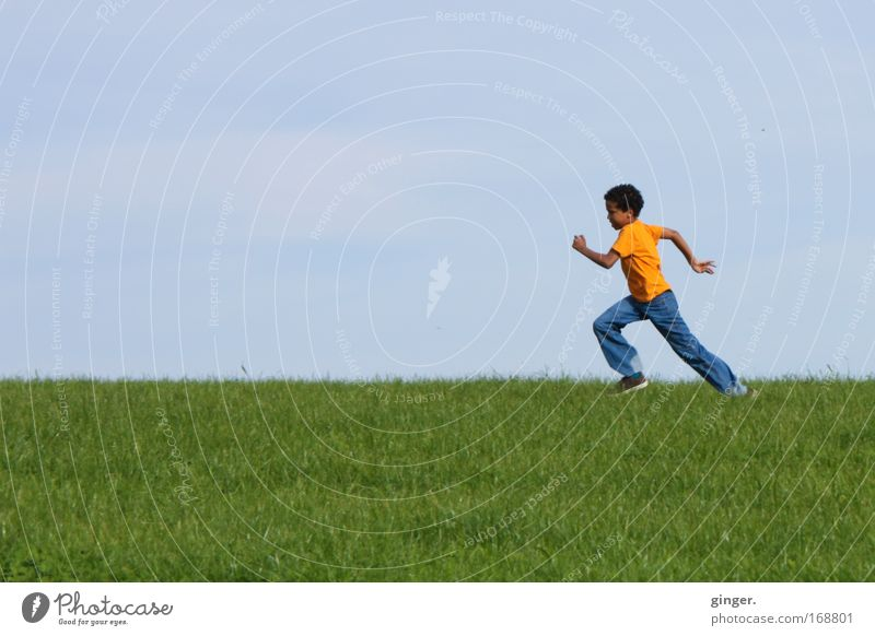 Durchstarten Mensch Kind Himmel Natur Jugendliche blau grün Freude Landschaft Wiese Junge Gras Bewegung Frühling Horizont orange