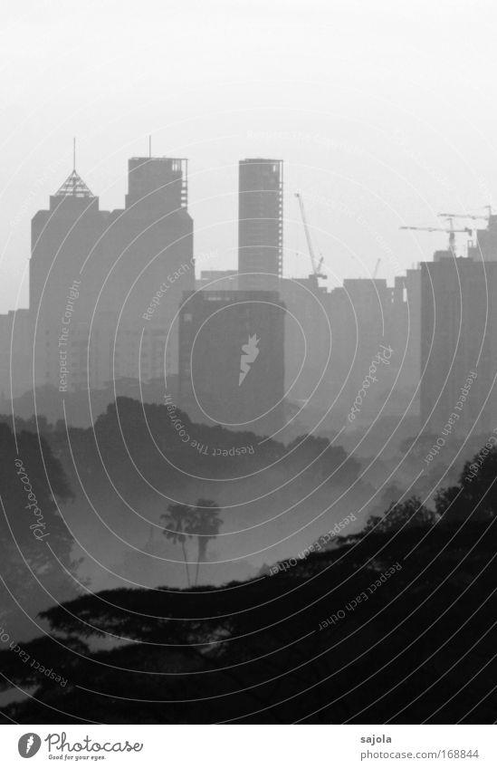 grossstadtdschungel Umwelt Natur Nebel Baum Wald Urwald Singapore Asien Stadt Hauptstadt Stadtzentrum Haus Hochhaus Bauwerk Gebäude Antenne grau Wachstum