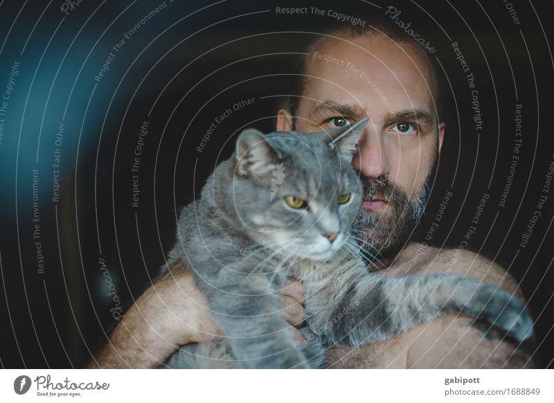 Mann mit Katze auf dem Arm Mensch maskulin Erwachsene Bart 1 Tier Haustier tragen kuschlig natürlich niedlich wild weich blau braun grau Gefühle Einigkeit
