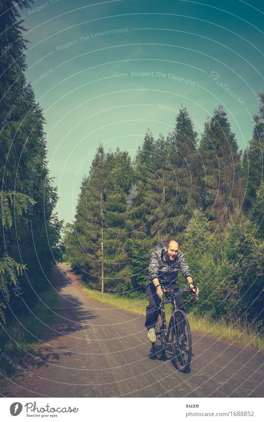 Auf Zack Lifestyle Freude Freizeit & Hobby Ausflug Fahrradtour Sommer Fahrradfahren Mensch maskulin Junger Mann Jugendliche Erwachsene Umwelt Natur Landschaft