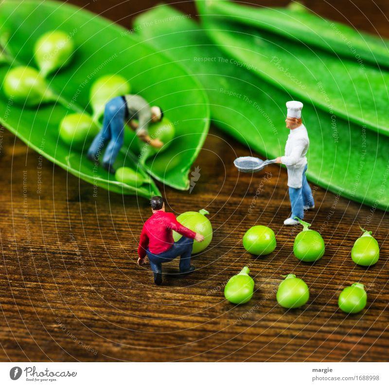 Miniwelten - Erbsenernte Mensch Mann grün Erwachsene Lebensmittel braun Arbeit & Erwerbstätigkeit maskulin Ernährung warten Küche Gemüse Gastronomie Beruf