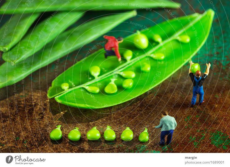 Miniwelten - Erbsenzähler Lebensmittel Gemüse Ernährung Bioprodukte Vegetarische Ernährung Diät Beruf Koch Arbeitsplatz Baustelle Küche Gastronomie Team Mensch