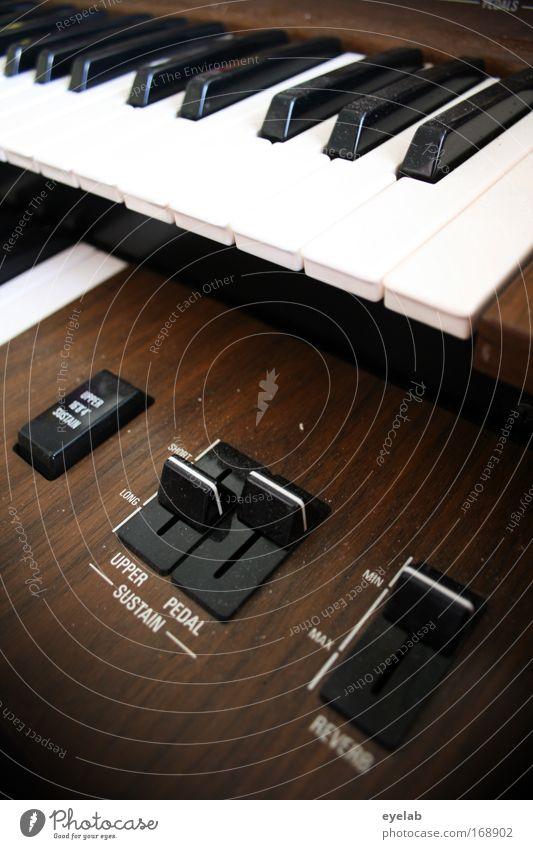 Organ-Spende Freude Holz Stimmung Freizeit & Hobby Musik Schriftzeichen Technik & Technologie Kunststoff Konzert Bühne Klavier Musiker Keyboard Medienbranche