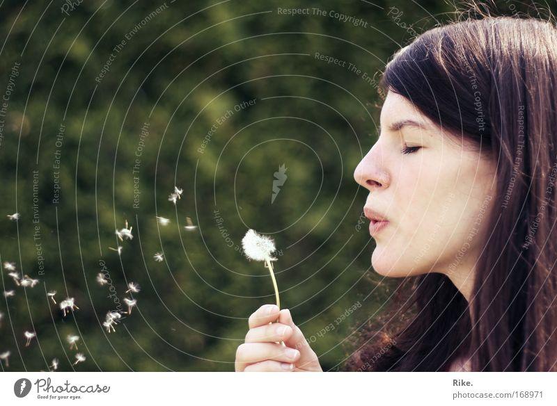 Pusteblume pusten. Frau Mensch Natur Hand Jugendliche Pflanze Freude Gesicht ruhig feminin Gefühle Spielen Frühling Glück Haare & Frisuren