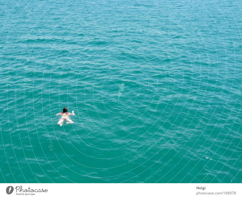Freischwimmer... Mensch Natur blau Wasser weiß Ferien & Urlaub & Reisen Sommer Meer Freude Bewegung klein Schwimmen & Baden nass Schönes Wetter Sommerurlaub